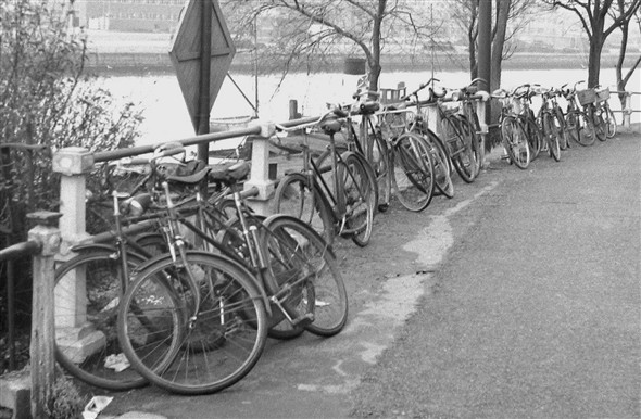 Photo:Bicyclers lined up at the ferry crossing