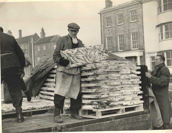 Photo:Frozen Fish, 1950's