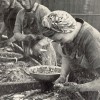 Page link: Scotch Girls Gutting Fish, 1950's