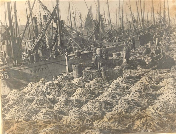 Photo:Cran baskets filled with herring on the Quayside